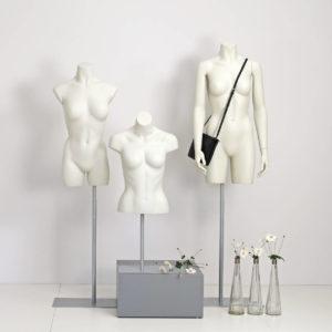 Dame torsoer i forskellige modeller